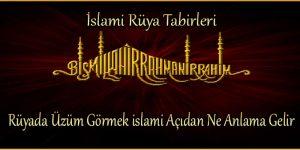 Rüyada Üzüm Görmek islami Açıdan Ne Anlama Gelir