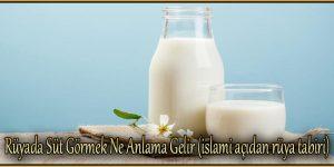 Rüyada Süt Görmek Ne Anlama Gelir