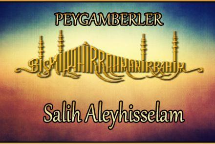 Salih Aleyhisselam