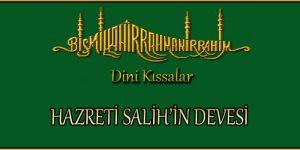 HAZRETİ SALİH'İN DEVESİ