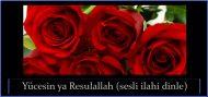 Yücesin ya Resulallah (sesli ilahi dinle)
