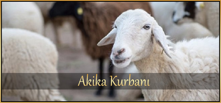 Akika Kurbanı