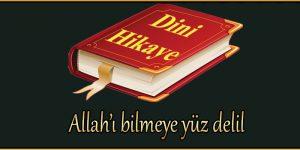 Allah'ı bilmeye yüz delil