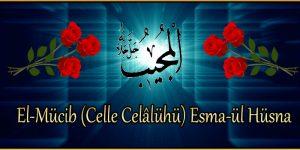 El-Mücib (Celle Celâlühü) Esma-ül Hüsna