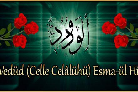El-Vedüd (Celle Celâlühü) Esma-ül Hüsna