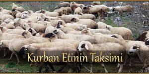 Kurban Etinin Taksimi