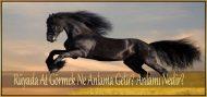 Rüyada At Görmek Ne Anlama Gelir?  Anlamı Nedir?