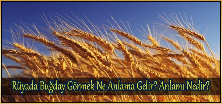 Rüyada Buğday Görmek Ne Anlama Gelir
