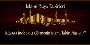 Rüyada inek – öküz Görmenin islami Tabiri Nasıldır?