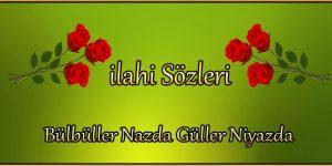 Bülbüller nazda güller niyazda