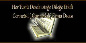 Her Türlü Derde isteğe Dileğe Etkili Cennetül ( Cünnet'ül ) Esma Duası