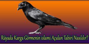 Rüyada Karga Görmenin islami Açıdan Tabiri Nasıldır