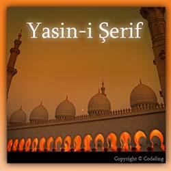 Yasin Suresi'nin Türkçe ve Arapçası Mobil Uygulama