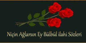 Niçin Ağlarsın Ey Bülbül ilahi Sözleri