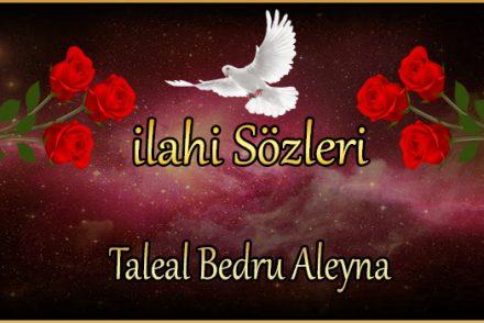 Taleal Bedru Aleyna
