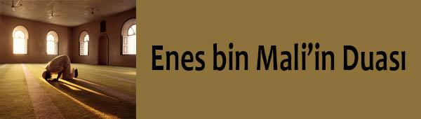 Enes bin Mali'in Duası
