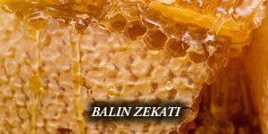 BALIN ZEKATI