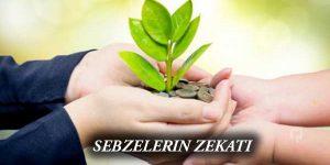 SEBZELERIN ZEKATI