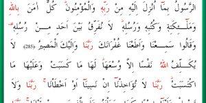 Amenerrasulü Duası Arapça, Türkçe Okunuşu ve Faziletleri