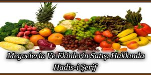 Meyvelerin Ve Ekinlerin Satışı Hakkında Hadis-i Şerif