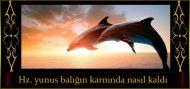 Hz. Yunus Balığın Karnında Nasıl Kaldı