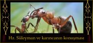 Hz. Süleyman ve karıncanın konuşması
