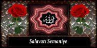 Salavatı Semaniye