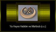 Ya Hayra Habibin ve Mahbub (c.c.)