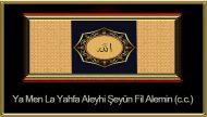 Ya Men La Yahfa Aleyhi Şeyün Fil Alemin (c.c.)