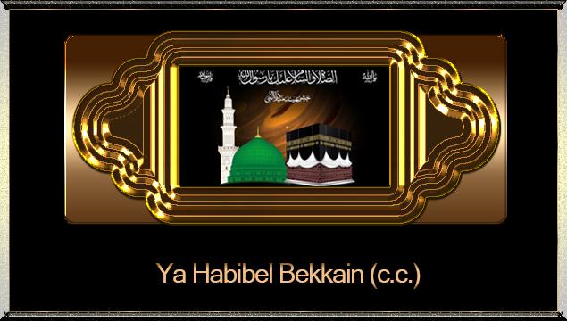 Ya Habibel Bekkain (c.c.)