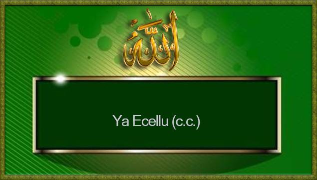 Ya Ecellu (c.c.)
